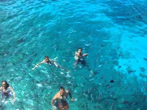 nadando con los peces en la piscina natural san andres
