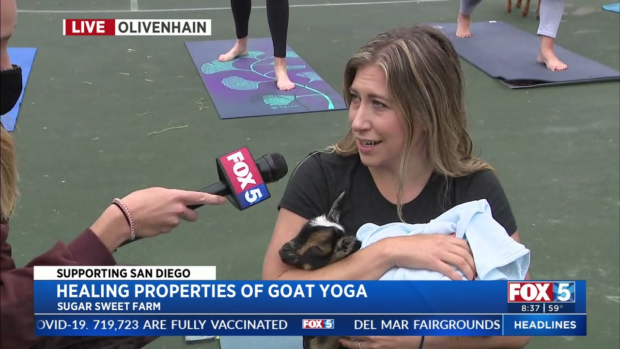 Sugar Sweet Farms Goat Yoga supports the Challenged Athletes Foundation