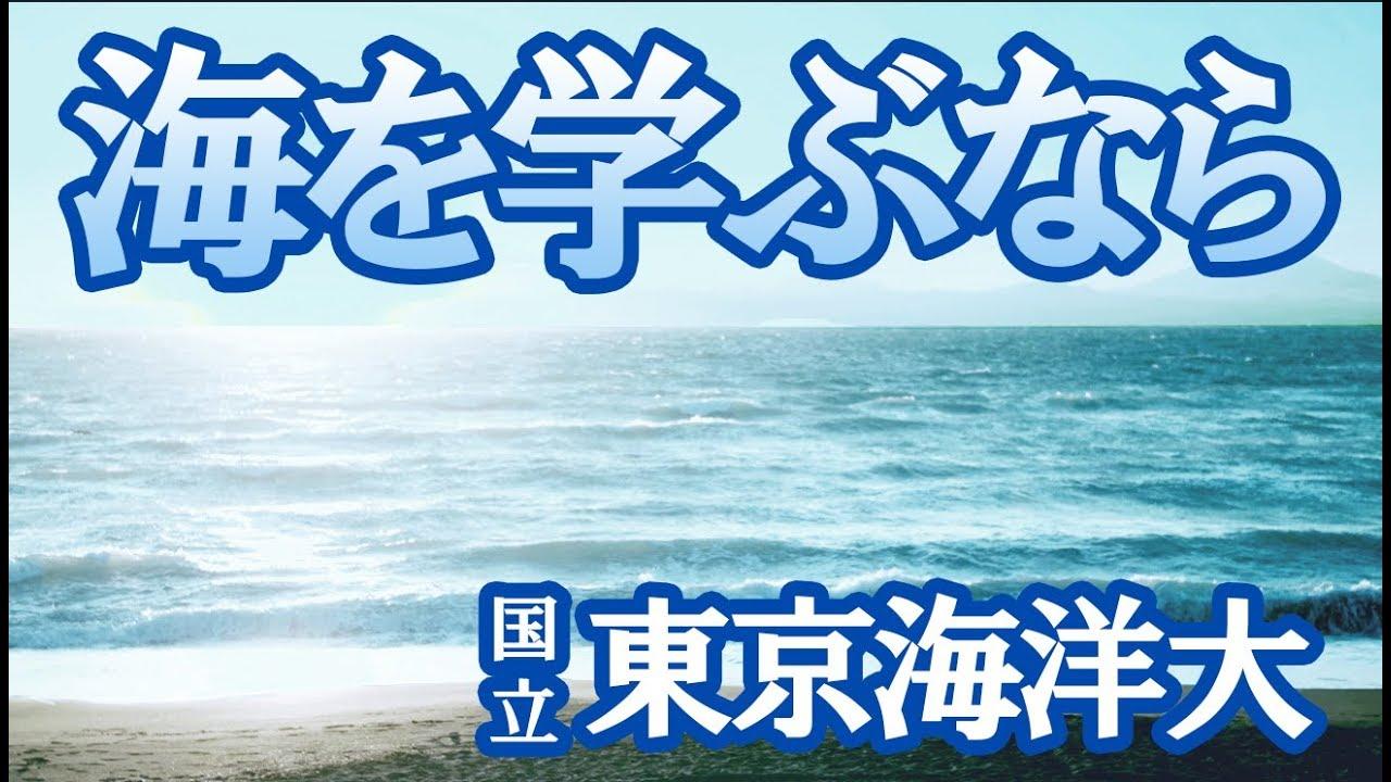 東京海洋大学 海洋資源環境学部 海洋資源エネルギー学科はどんな学科?