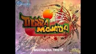MUCHACHA TRISTE (CANTADA) - BANDA TIERRA MOJADA ESTRENO 2014