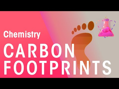What Are Carbon Footprints | Chemistry for All | FuseSchool