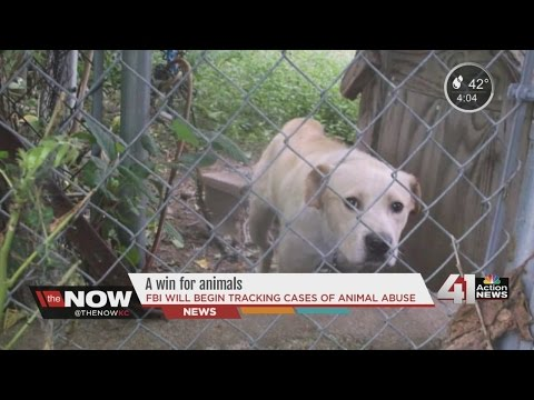 FBI now tracks animal cruelty cases in metro