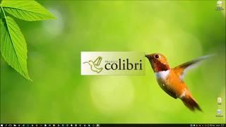 Projecto Colibri RCP 12 - Pagamento Mutibanco