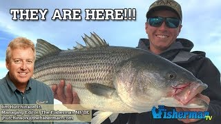 October 18, 2018 New Jersey/Delaware Bay Fishing Report with Jim Hutchinson, Jr.