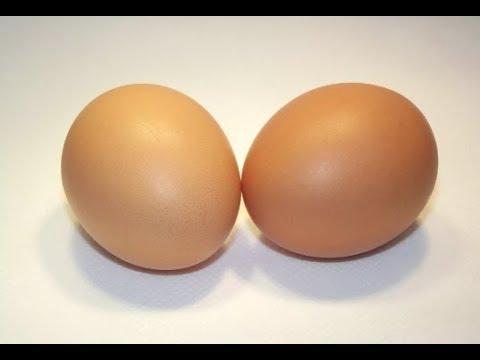 Куры несут два яйца в день! Как этого добиться?