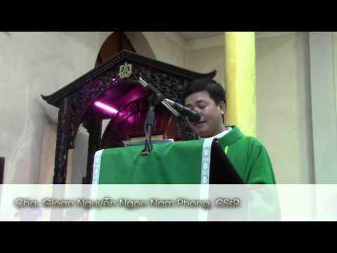 Cha Gioan Nguyễn Ngọc Nam Phong: Bài giảng lễ công lý và hòa bình - 26.7.2015