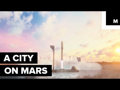 Elon Musk unveils his plans to build cities in space