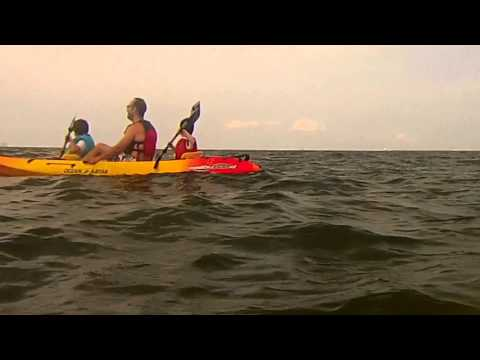 Lewes-Delaware Bay Kayaking