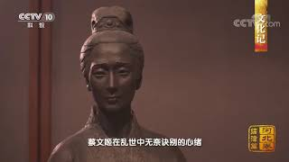 《中国影像方志》 第414集 河北临漳篇| CCTV科教