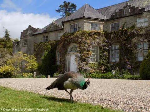 Gardens of Ireland - Altamont Gardens, Co. Carlow, Ireland. Spring 2015