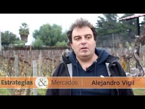 Alejandro Vigil: Los buenos puntajes en los vinos hablan de Argentina