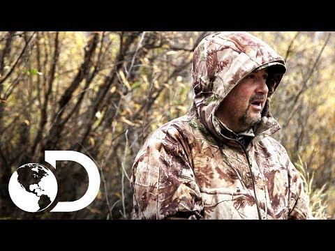 Cazadores buscan alces que cazar | Hombres del Ártico | Disc