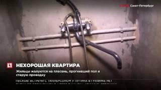 Жители самой большой коммунальной квартиры в Санкт-Петербурге требуют расселения