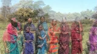 raigarh district k pussore block me krishi vibhag ki yojnaon se aai jaagriti