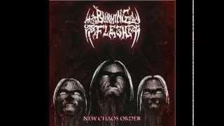 BURNING FLESH - New Chaos Order (2/3 album)