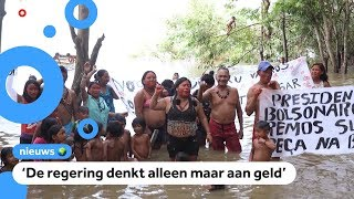 Regenwoud wordt afgepakt van Indianen