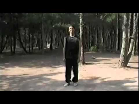 Northern China Shaolin Martial Arts Academy - Christoph Eberhard