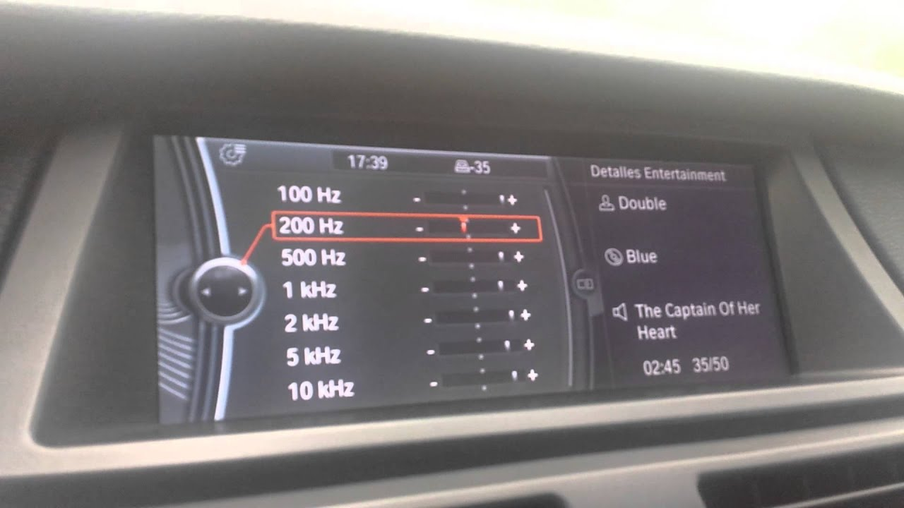 Bmw X5 Professional Hi Fi Sound System Double The Captain