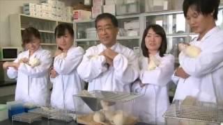 麻布大学 研究室紹介08_浅井 史敏 教授