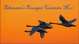 Telemann, Trumpet Concerto, No.1, (1.Adagio, 2.Allegro)