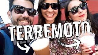 Dicas de viagem Santiago | O que beber no Chile | Terremoto