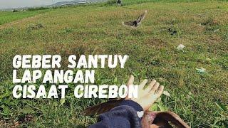 Latihan Merpati Balap Lapangan Cisaat Cirebon Timur, Geber Santai