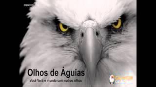 Olhos de àguias apresentaçao 2016