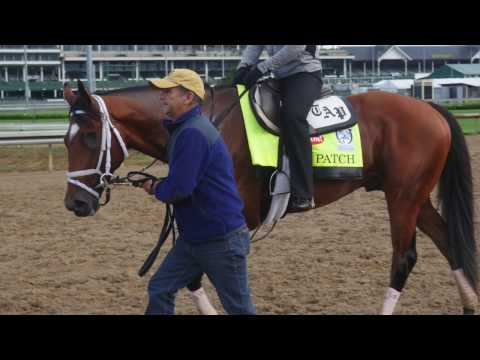 Kentucky Derby 2017: Todd Pletcher- Always Dreaming, Patch, Battalion Runner and Tapwrit