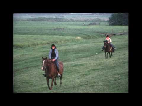 Familie Kraan - Verschillende filmpjes