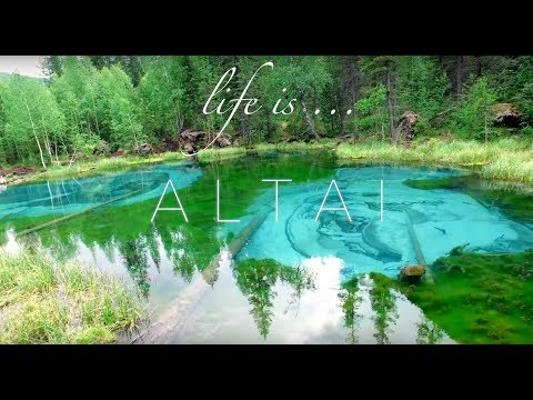 life is... AltaiI ! summer in Siberia