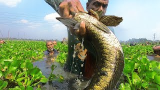 Awesome World Best Amazing Bills From Fishing Video!! 100% Real Village Polo Fishing