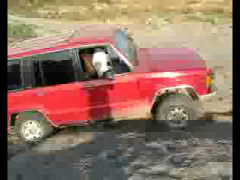 Isuzu Trooper 92 Vendo Cambio 68 Youtube