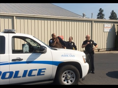 19 year old topless woman arrested and taken by Ashland Police