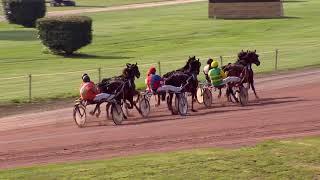 Vidéo de la course PMU PRIX DU WEISSHORN