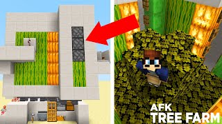 Survival Let's Play IS BACK + OP AFK TREE FARM in MINECRAFT! - Let's Play Ep. 19
