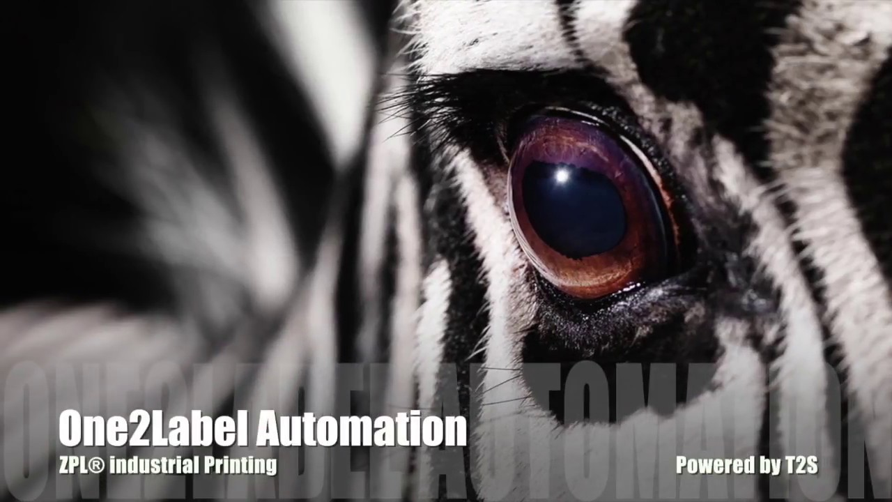 One2Label Automation - Type2Solutions