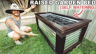 DIY Self Watering Raised Garden Bed