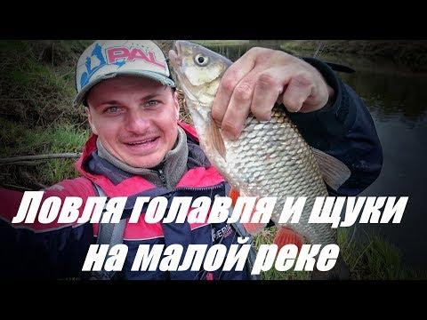fish today. рыбалка