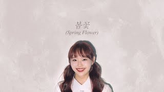 Download lagu LOONA Chuu (이달의 소녀 츄) - Spring Flower (봄꽃) (Into The Ring 출사표 OST) Lyrics/한국어 가사