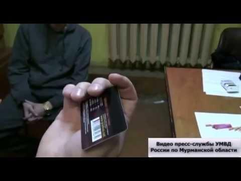 В Мурманске пресечена деятельность организованной группы