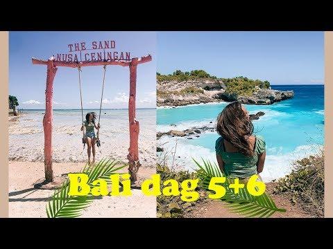 Bali🌴 Dag 5&6 - Naar De Nusa Islands | Aimée Van Der Pijl