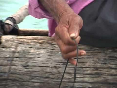 Tonga Documentary