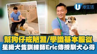 幫狗仔戒陋習/學識基本服從 星級犬隻訓練師Eric傳授馴犬心得