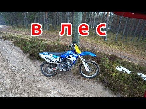 покатушка в лесу на мотоцикле Yamaha Yz450f