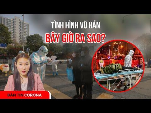 Bản Tin Corona:  Tình hình Vũ Hán bây giờ ra sao