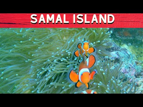 Top 10 Tourist Destinations in Samal  Island - byahe ni drew