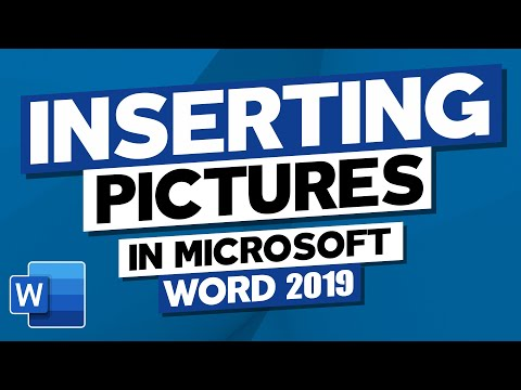 How to Insert Pictures in Microsoft Word 2019. MS Word Tutorial