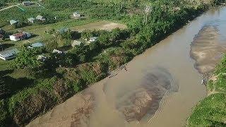Peruvians fight back against Amazon deforestation