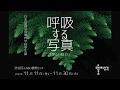 「呼吸する写真」 2016 渋谷区ふれあい植物センター の動画、YouTube動画。