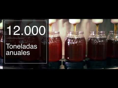 Maes Honey - Conoce nuestra empresa